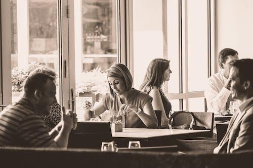 吃, 女人, 室內, 烏賊 的 免费素材照片