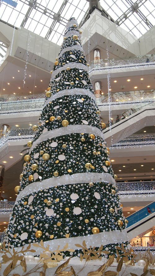 Free stock photo of christmas, christmas tree, Istanbul