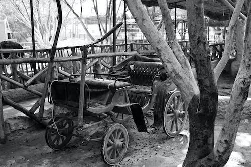 도시의 쇠퇴, 블랙 앤 화이트, 카트의 무료 스톡 사진