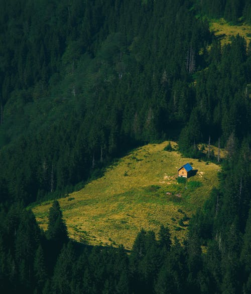 From above of lonely wooden house located on green grassy slope of mountain and surrounded by lush coniferous forest