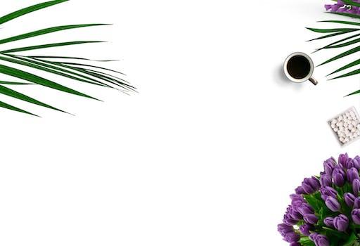 Fotografía de vista superior de la taza de cerámica blanca sobre fondo blanco