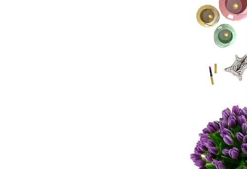 Darmowe zdjęcie z galerii z asortyment, bukiet kwiatów, fioletowy, instagram