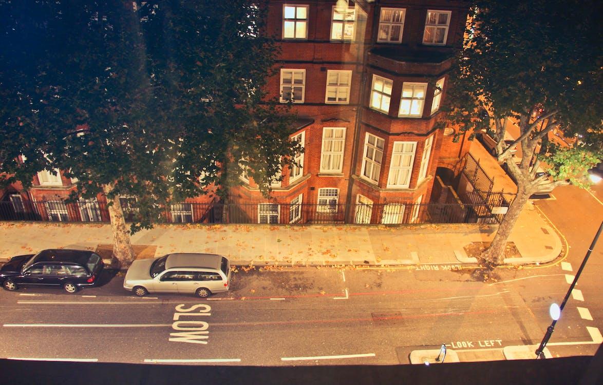 ağaçlar, akşam, arabalar