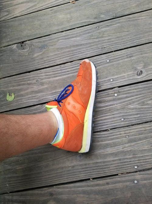 橙子, 橙橘 的 免费素材图片
