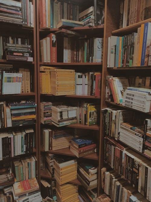 Gratis stockfoto met bibliotheek, boeken, boekenplanken