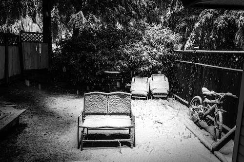 arka bahçe, bisiklet, dv8photography, iskemleler içeren Ücretsiz stok fotoğraf