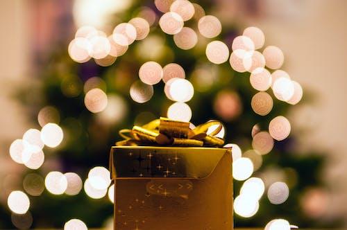 宏觀, 聖誕, 聖誕壁紙, 驚喜 的 免費圖庫相片