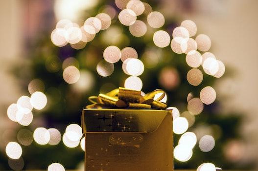Free stock photo of gift, present, bokeh, christmas