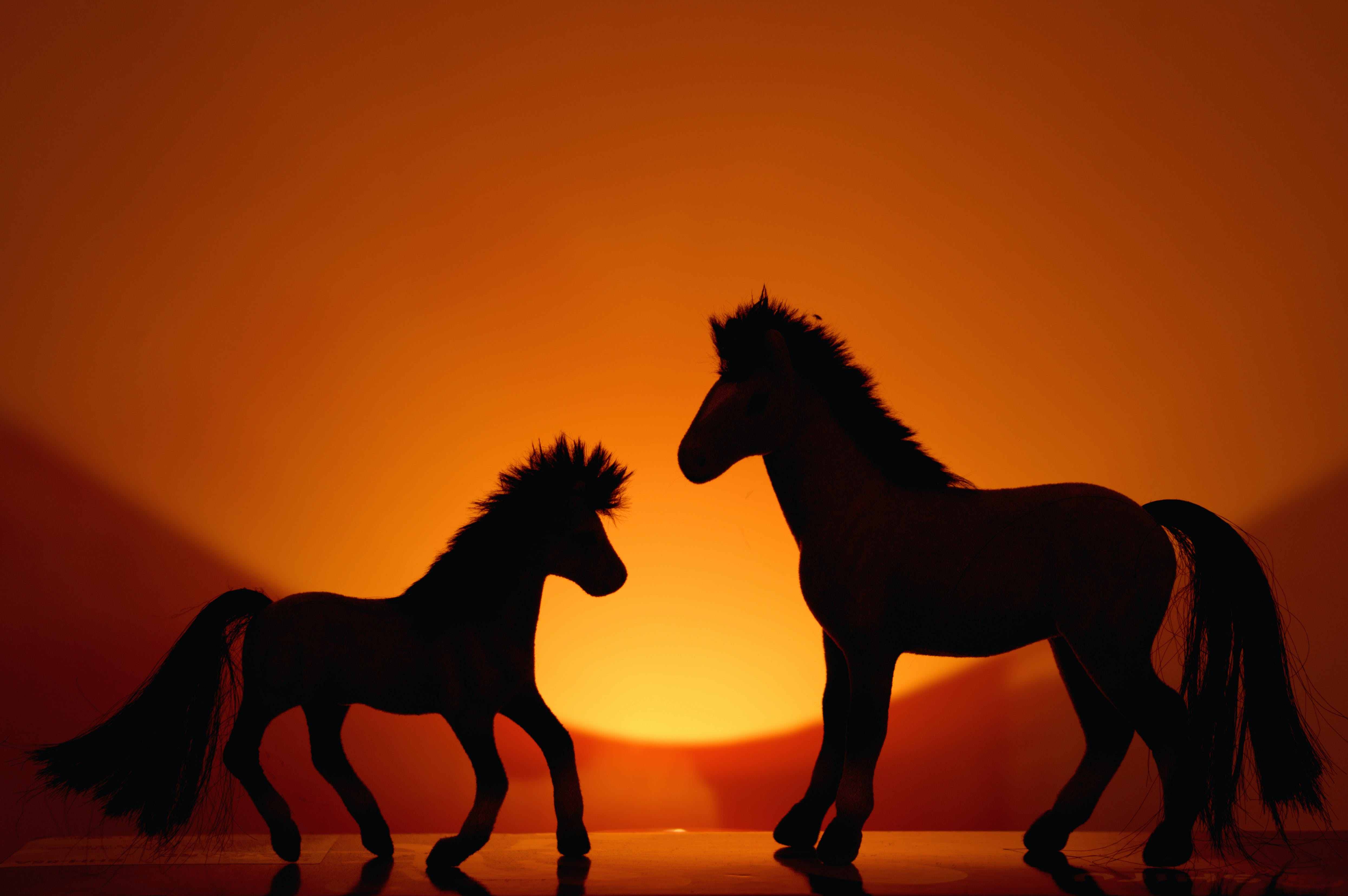 Free stock photo of toy, horse