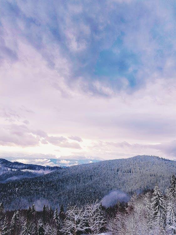 dagslys, fjell, forkjølelse