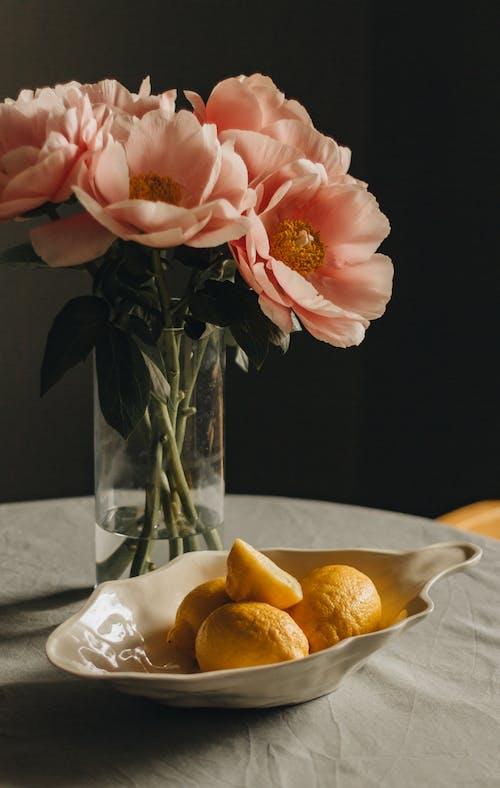 Gratis lagerfoto af blad, blomst, blomsterarrangement