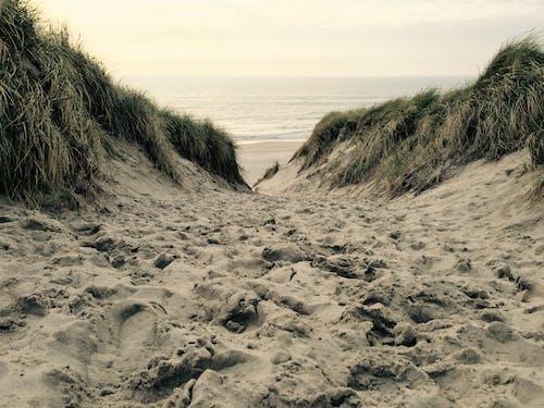 Darmowe zdjęcie z galerii z piasek, plaża, woda