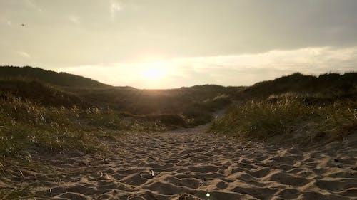Darmowe zdjęcie z galerii z plaża, słońce