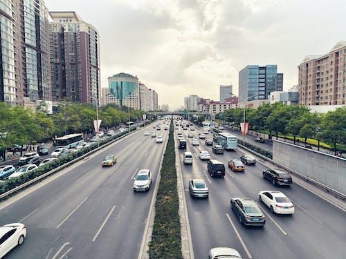 Cars on Road Near City Buildings