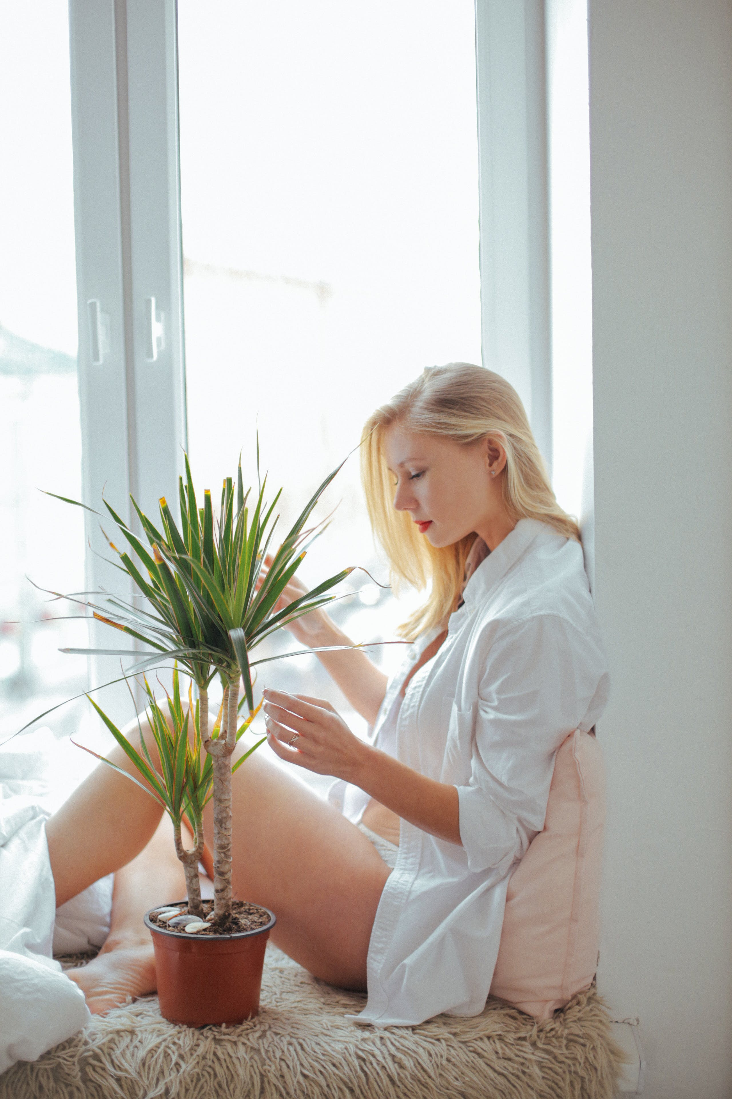 Woman Wearing White Long-sleeved Shirt Sitting Beside Green Plant