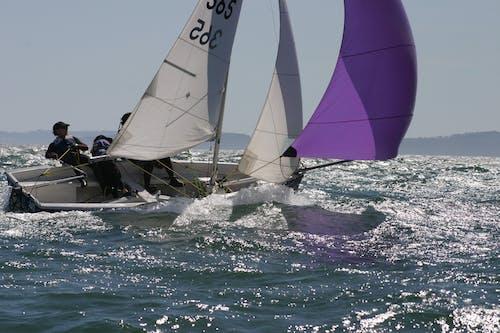 Foto profissional grátis de barco, barco a vela, bote, envio
