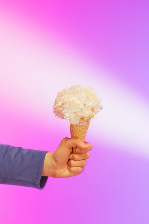 Fotobanka sbezplatnými fotkami na tému fialové pozadie, konceptuálny, kornút zmrzliny