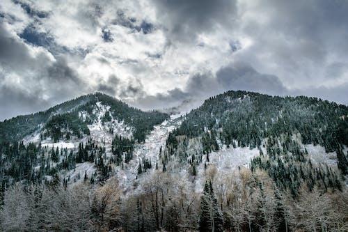 Gratis lagerfoto af bjerg, dagslys, forkølelse, frost