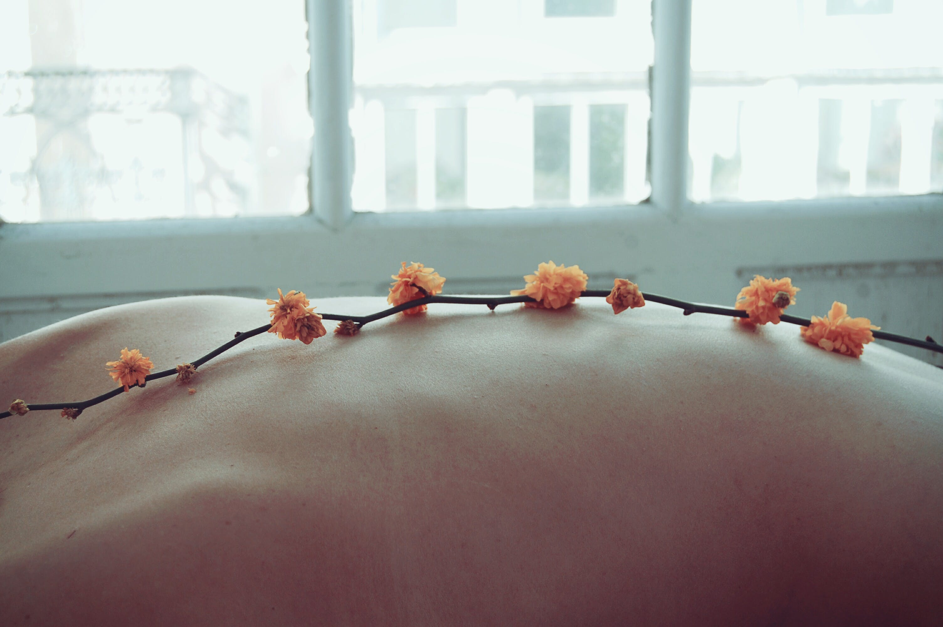 Orange Petaled Flowers on Person's Back