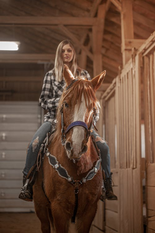 A Beautiful Woman Riding a Horse in a Stable