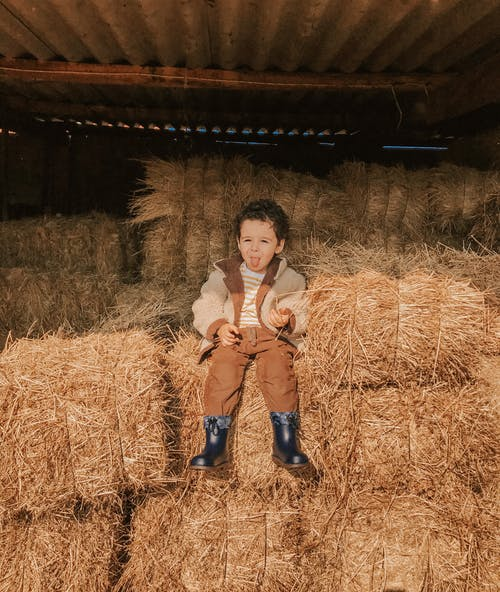 乾草, 乾草堆, 兒童 的 免費圖庫相片