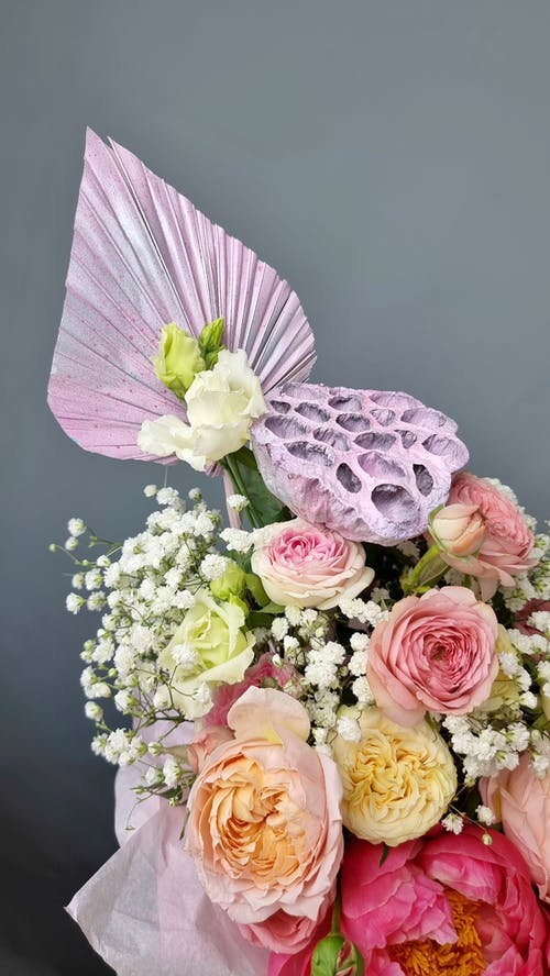 คลังภาพถ่ายฟรี ของ กลิ่น, กลีบดอกไม้, การจัดดอกไม้
