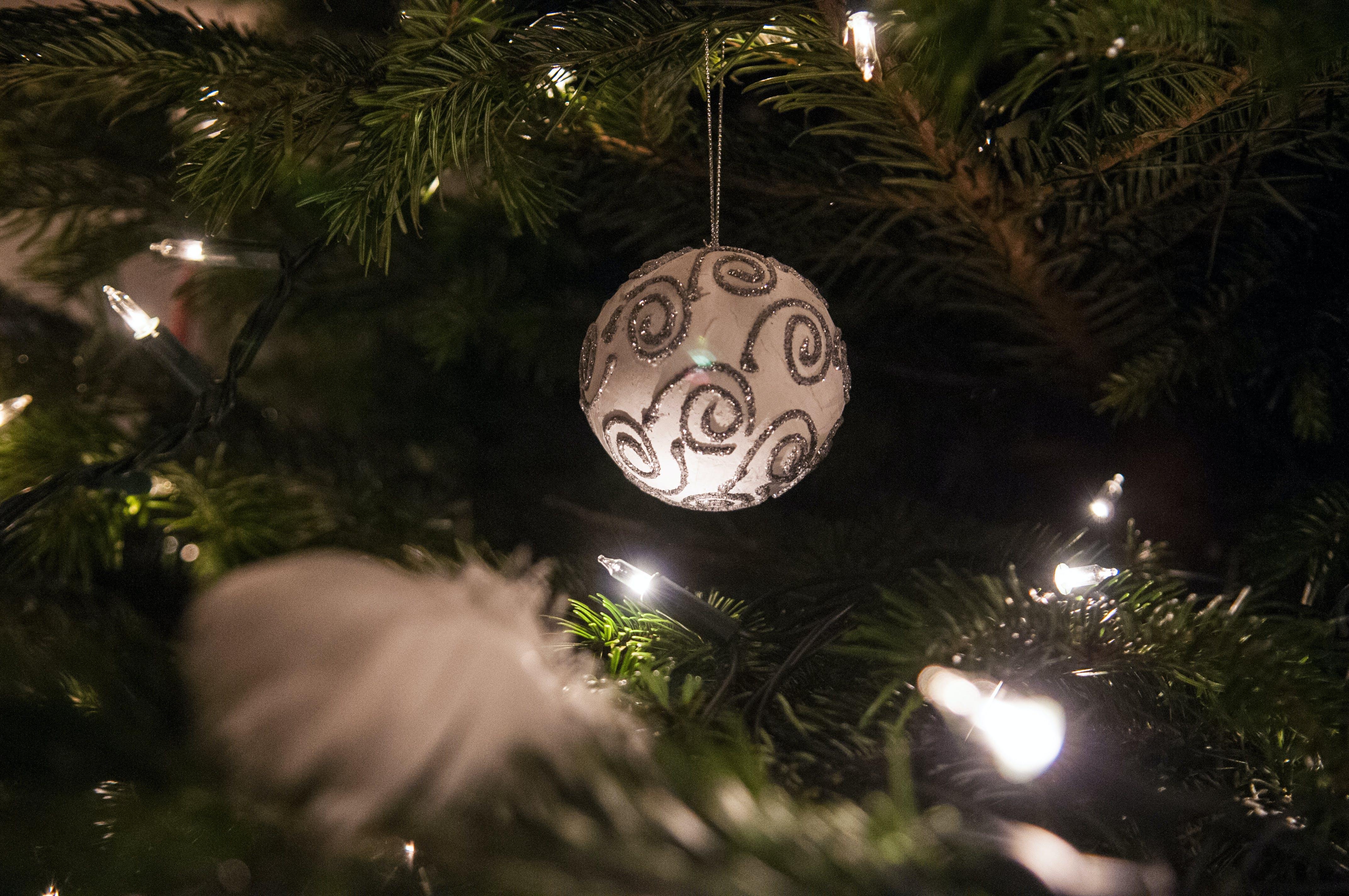 Free stock photo of night, theme christmas