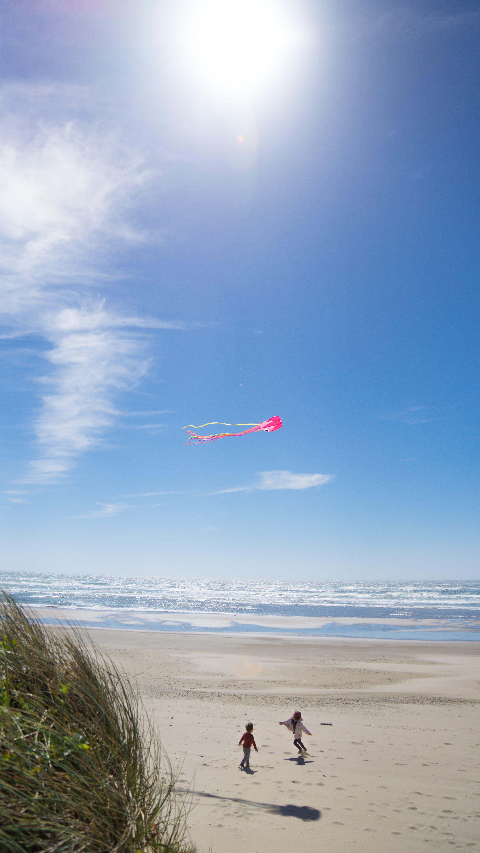 Free stock photo of beach, blue, blue sky, children