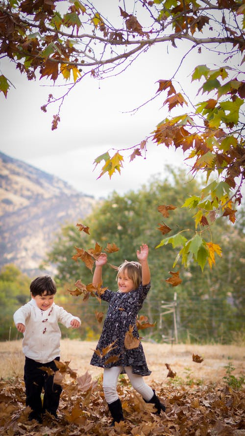 Free stock photo of children, colors of autumn, dried leaves, fall foliage