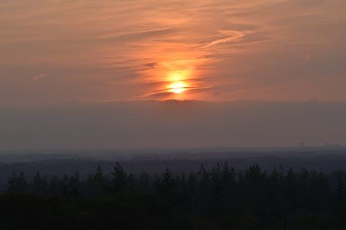 Immagine gratuita di alba, alberi, cielo drammatico