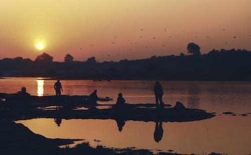 インド, ナルマダ, 朝の光, 朝の太陽の無料の写真素材