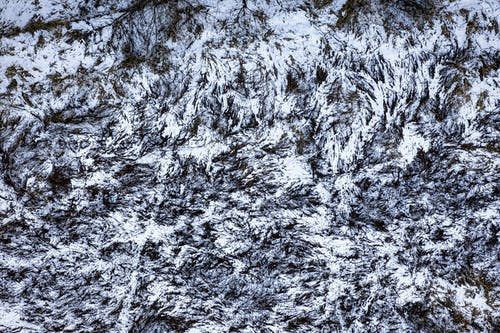 Free stock photo of abstract, christmas, cold