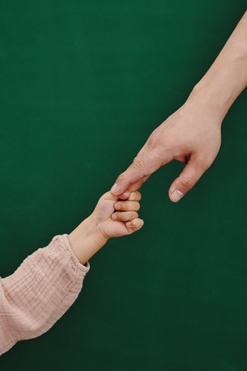 Person in White Long Sleeve Shirt Holding Persons Hand