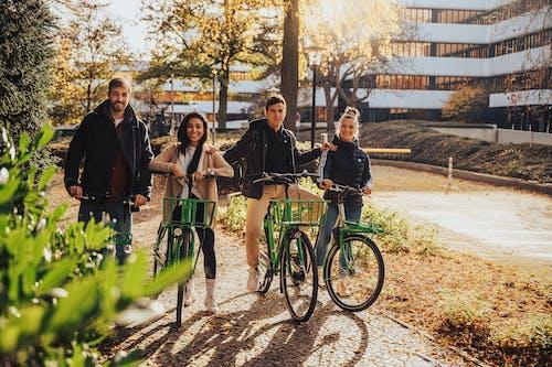 Kostenloses Stock Foto zu draußen, erwachsener, fahrrad