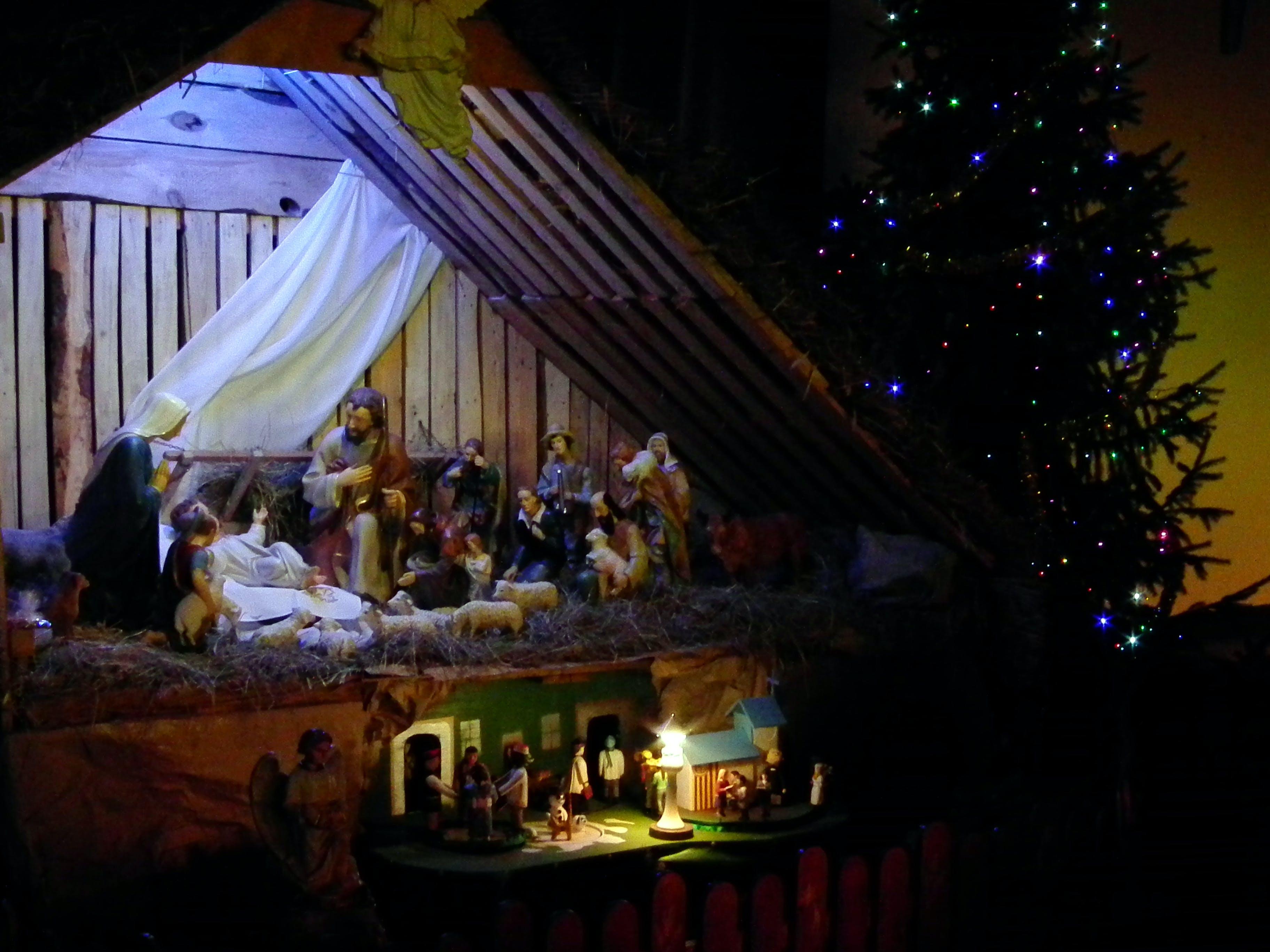 Free stock photo of theme christmas