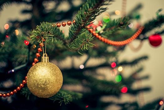 Yellow Bauble on Christmas Tree