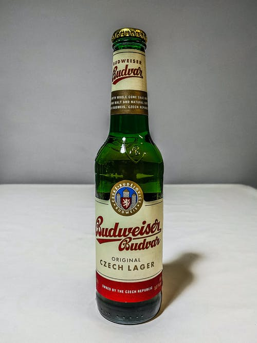 Free stock photo of beer, beer bottle, budvar