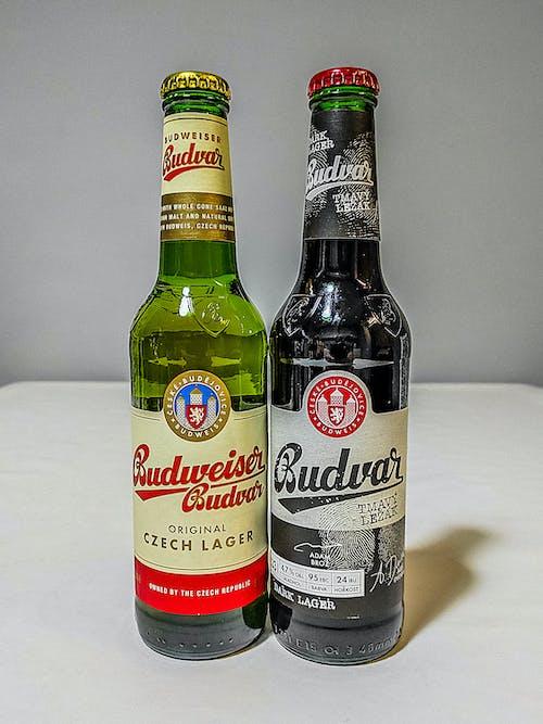 Free stock photo of beer, beers, black