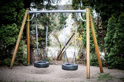 An Outdoor Tire Swings