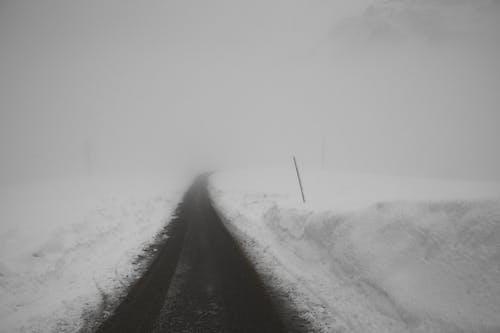 Photos gratuites de asphalte, bâton, brouillard, brume