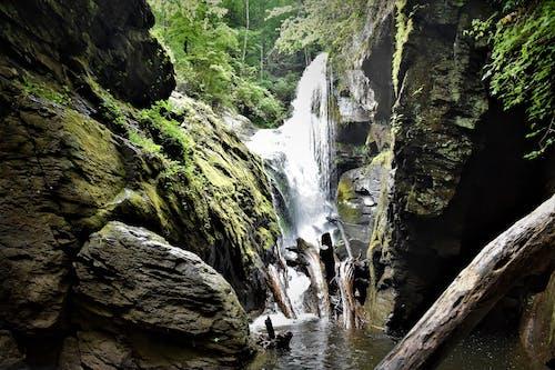 Free stock photo of laurel creek falls