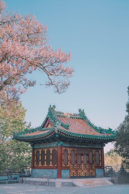 Základová fotografie zdarma na téma architektura, brána, budova