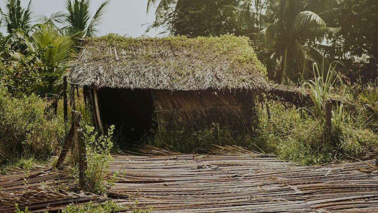 Foto Di Brown Nipa Hut
