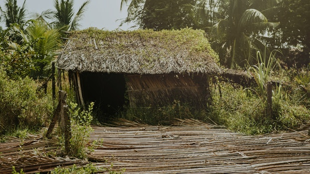 Brown Nipa Hut Photo