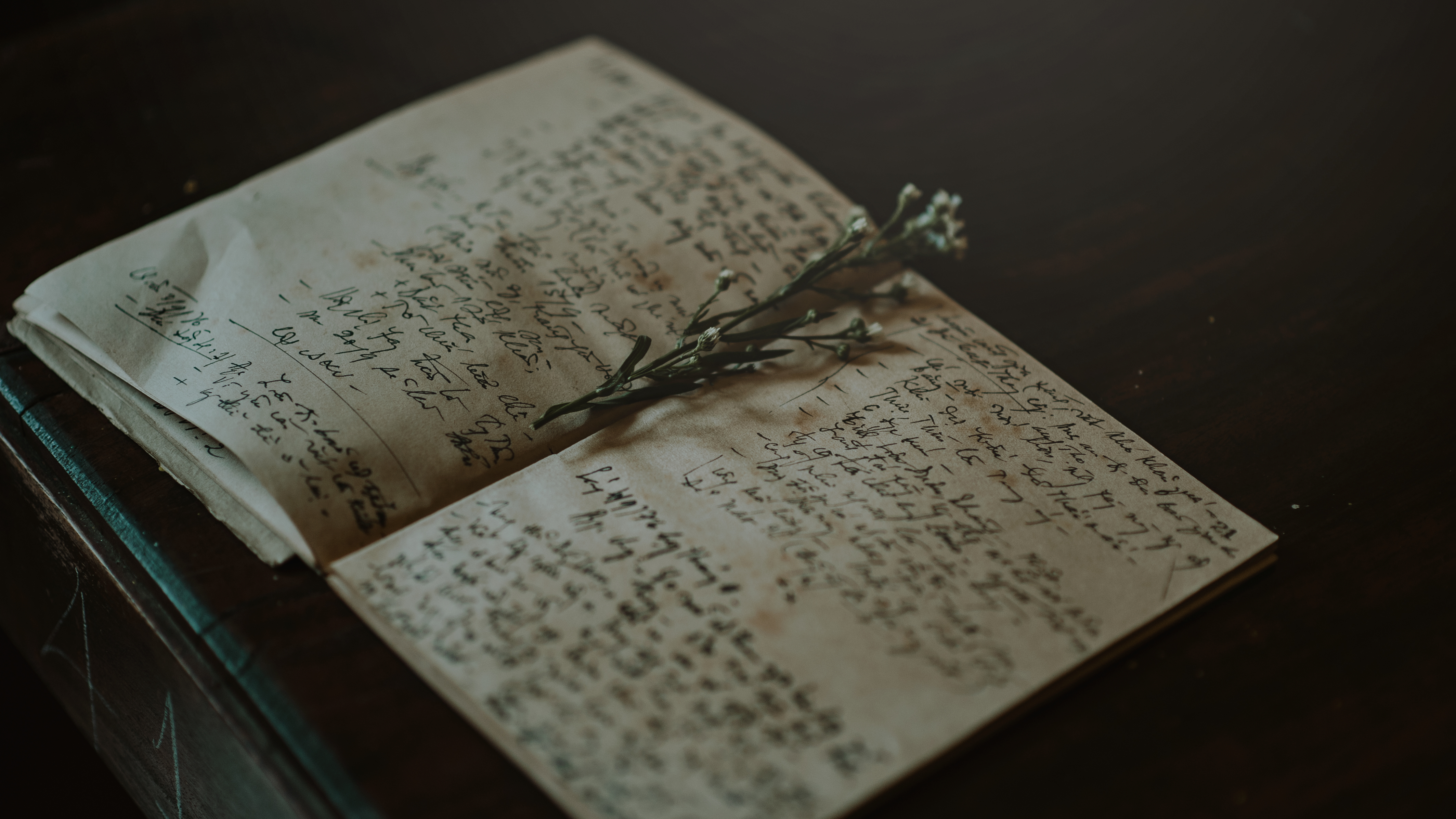 Close-up Photo of White and Black Journal