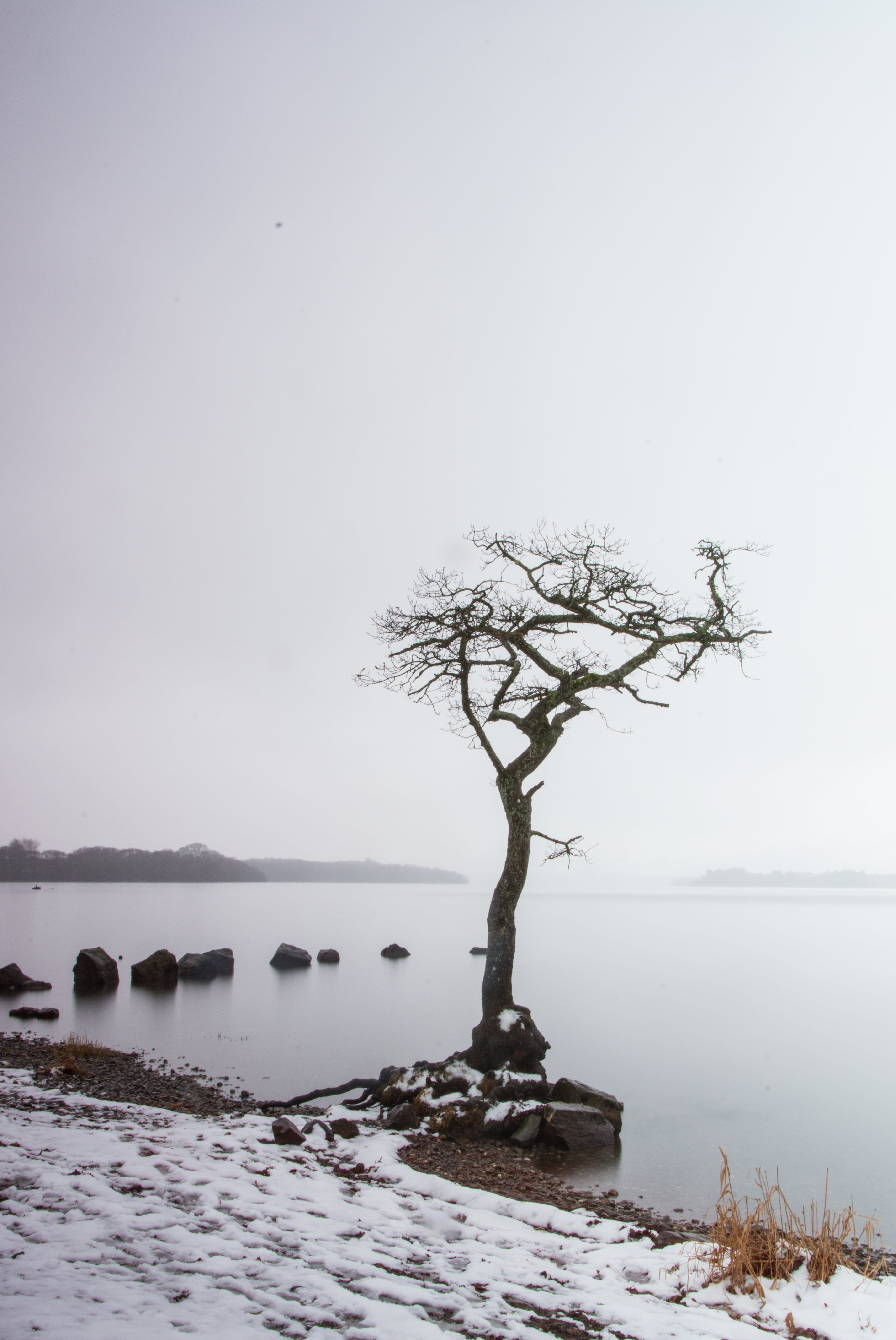 Free stock photo of loch, Loch Lomond, rocks, snow