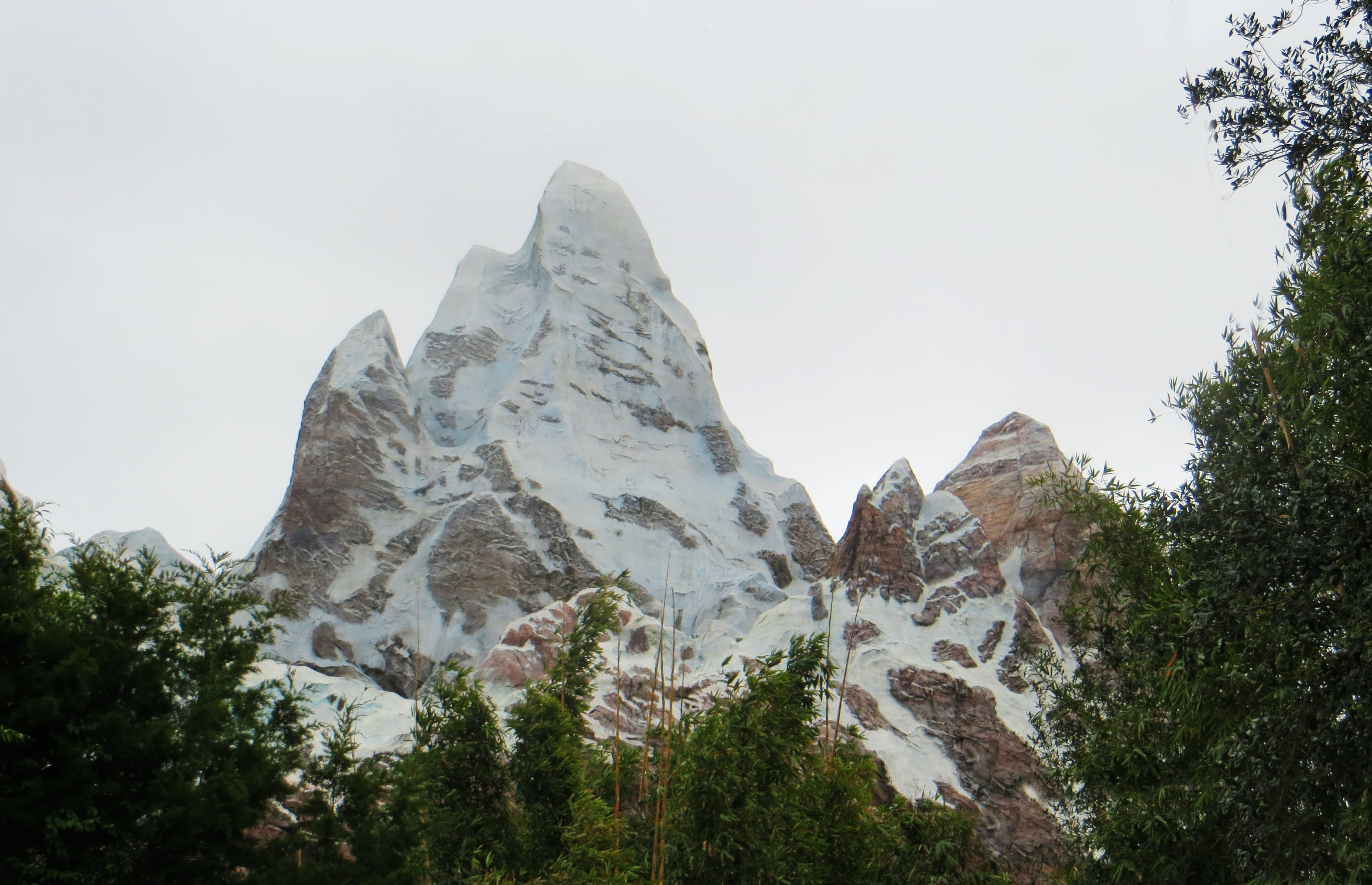 Darmowe zdjęcie z galerii z drzewa, dzień, fotografia przyrodnicza, góra