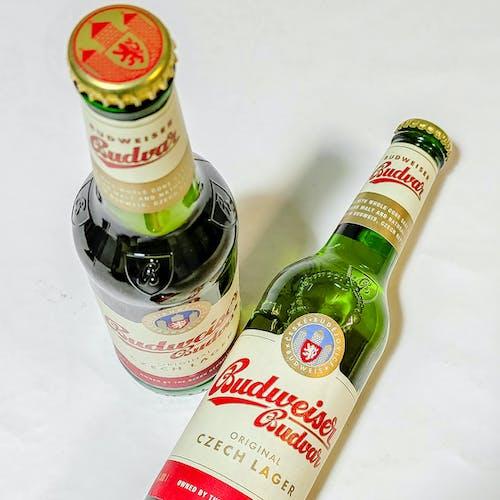 Free stock photo of beer, beer bottles, beers