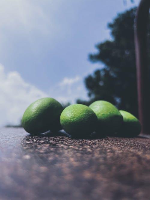 Free stock photo of dry leaf, green mangoes, mangoes