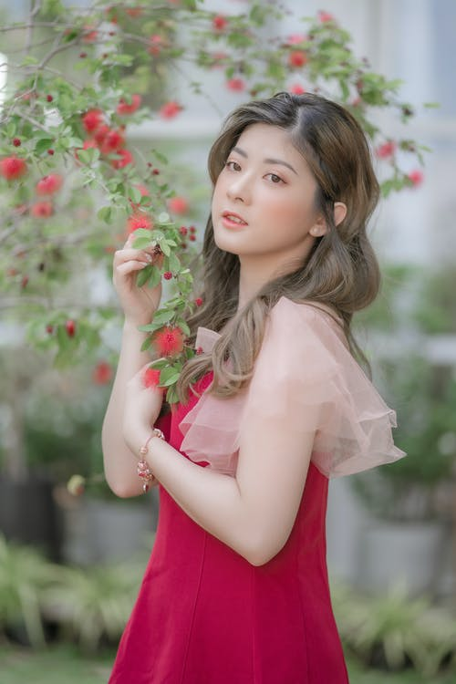 Woman in Red Dress Holding Red Flowers